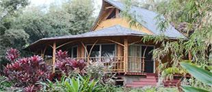 Maui Eco Retreat