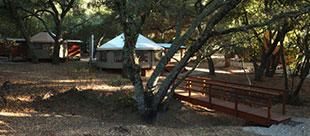 Wellspring Ranch
